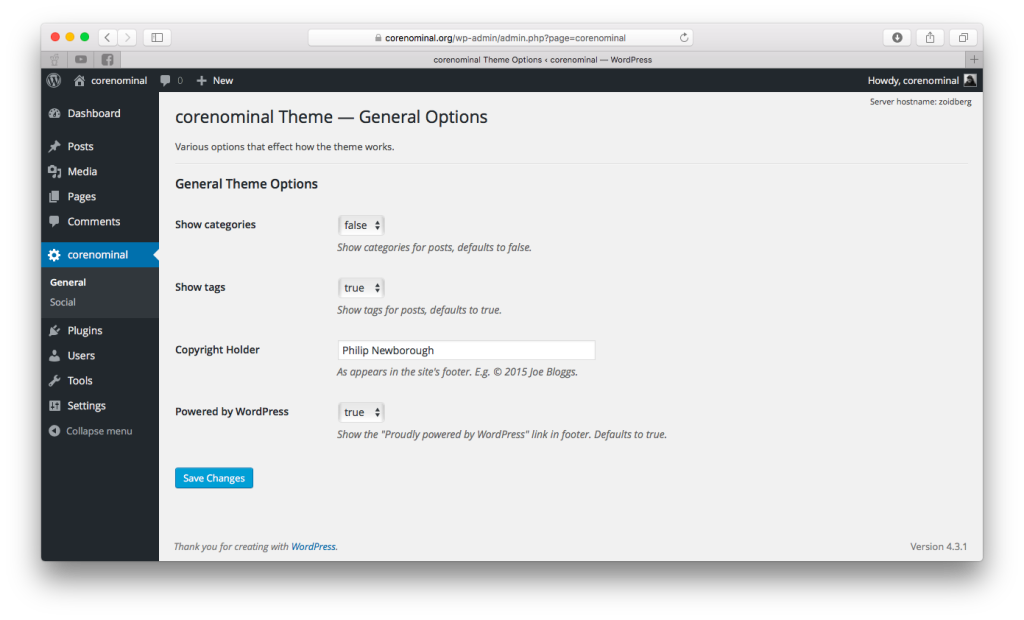 Screenshot of admin page showing custom theme options.